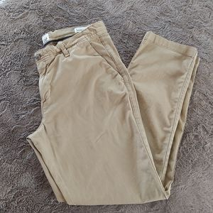 GAP Girlfriend Chino Ankle Pants